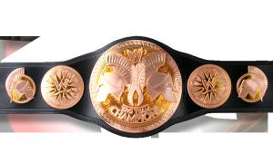 WWE Tag Team Championship  dans Dernières M.A.J render_tag_team_championship-300x180